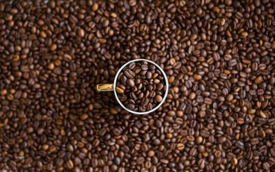 Arabica or Robusta: what kind of guy are you?